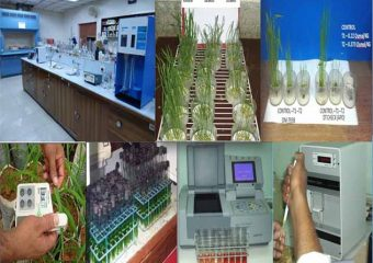 PLANT PHYSIOLOGY DIVISION